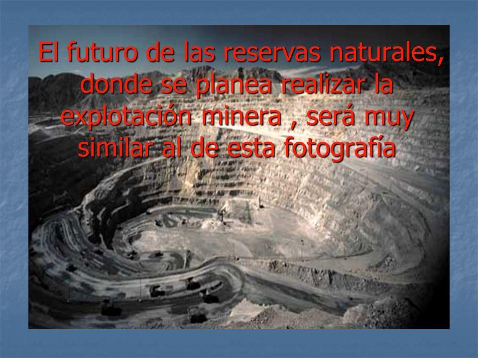 El futuro de las reservas naturales, donde se planea realizar la explotación minera , será muy similar al de esta fotografía