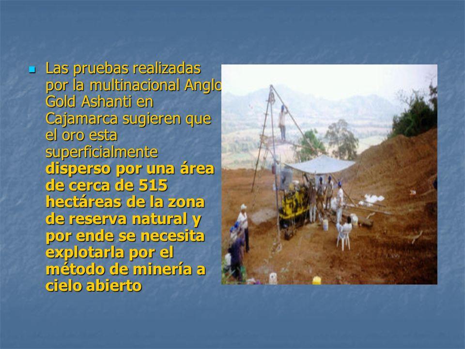 Las pruebas realizadas por la multinacional Anglo Gold Ashanti en Cajamarca sugieren que el oro esta superficialmente disperso por una área de cerca de 515 hectáreas de la zona de reserva natural y por ende se necesita explotarla por el método de minería a cielo abierto