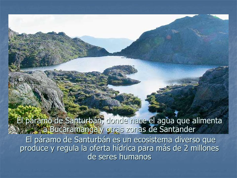 El páramo de Santurbán, donde nace el agua que alimenta a Bucaramanga y otras zonas de Santander