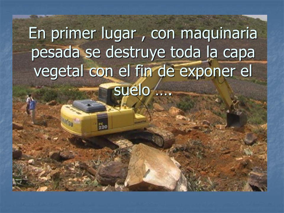 En primer lugar , con maquinaria pesada se destruye toda la capa vegetal con el fin de exponer el suelo ….
