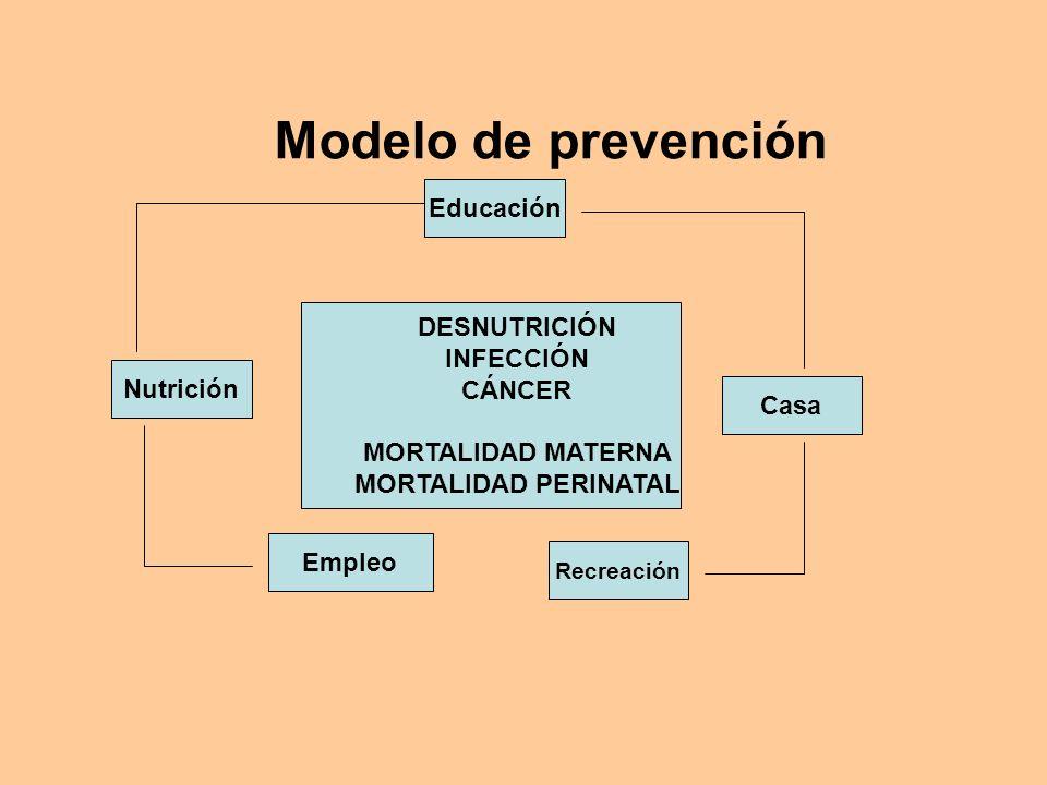 Modelo de prevención Educación DESNUTRICIÓN INFECCIÓN CÁNCER Nutrición
