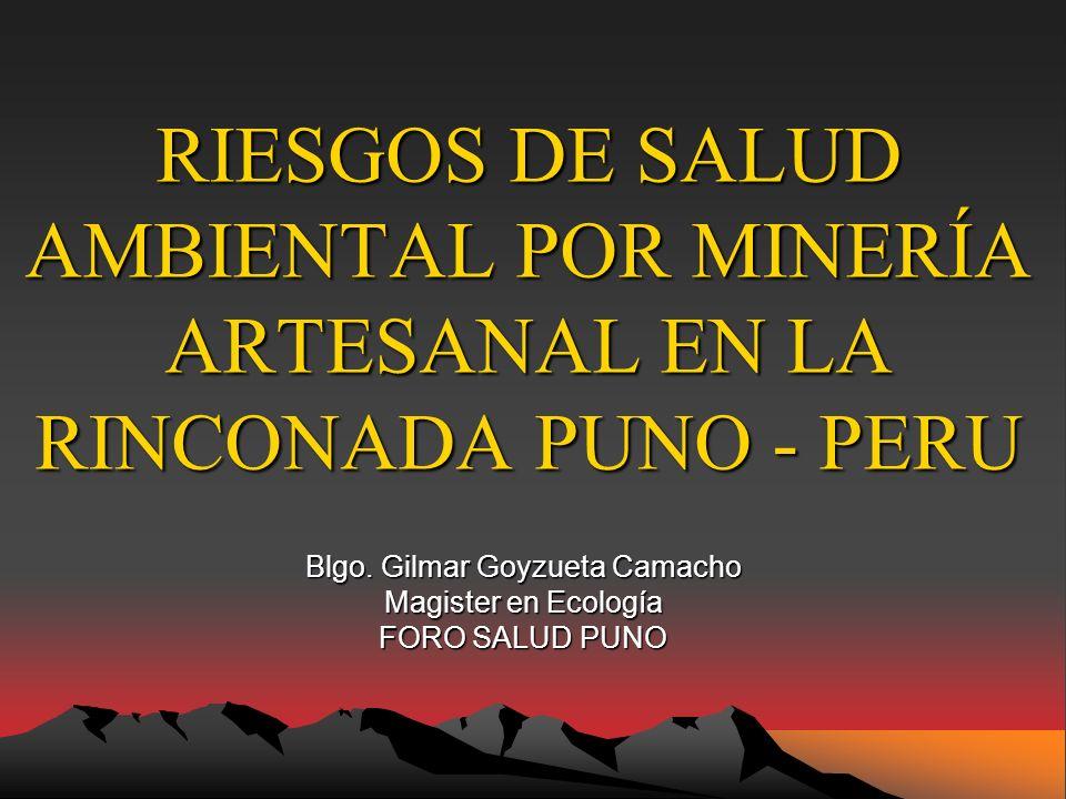 Blgo. Gilmar Goyzueta Camacho Magister en Ecología FORO SALUD PUNO