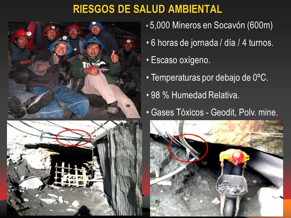 RIESGOS DE SALUD AMBIENTAL