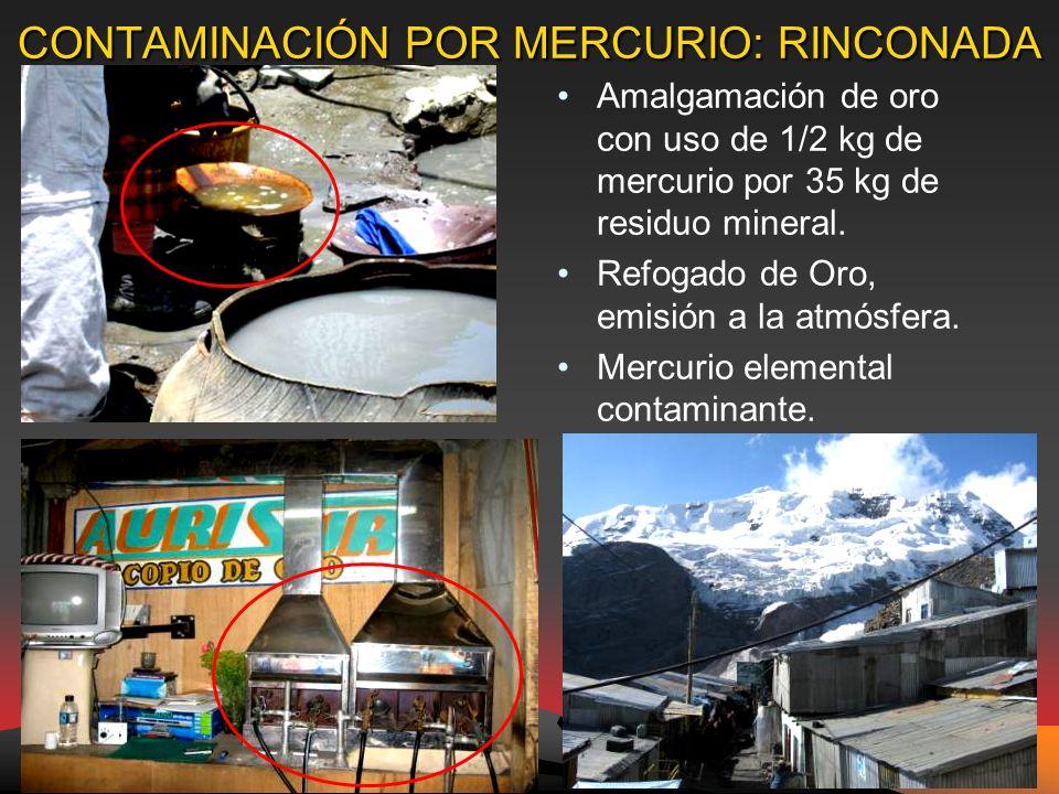 CONTAMINACIÓN POR MERCURIO: RINCONADA