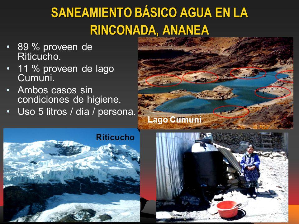 SANEAMIENTO BÁSICO AGUA EN LA RINCONADA, ANANEA