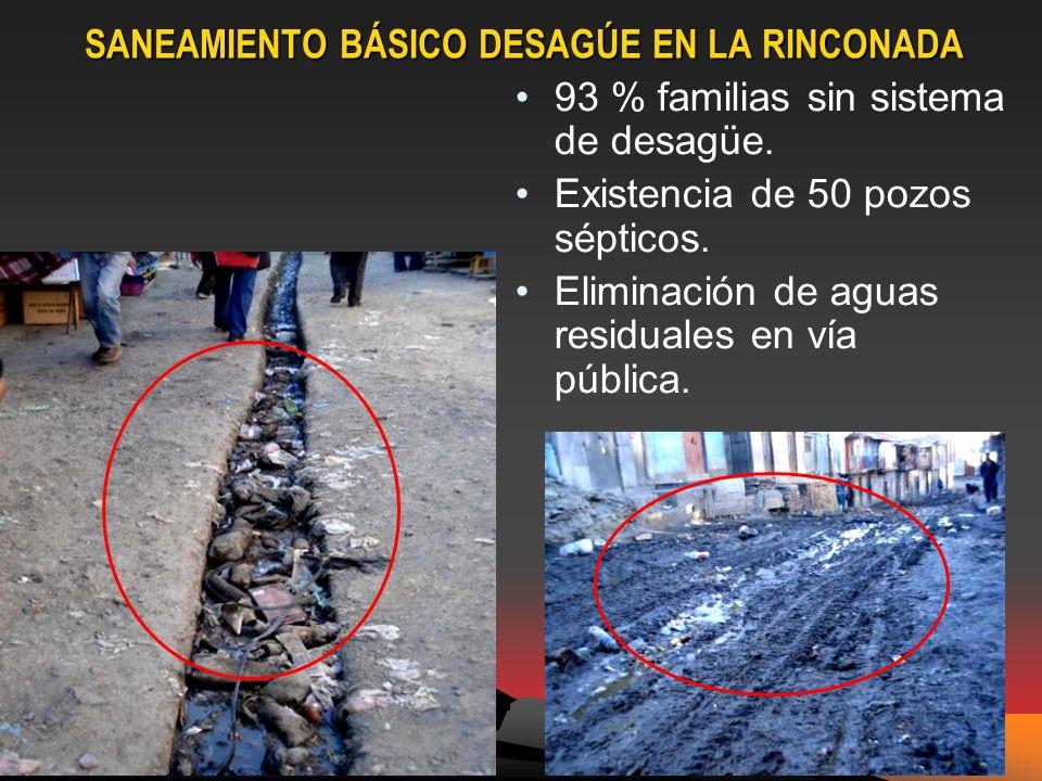 SANEAMIENTO BÁSICO DESAGÚE EN LA RINCONADA