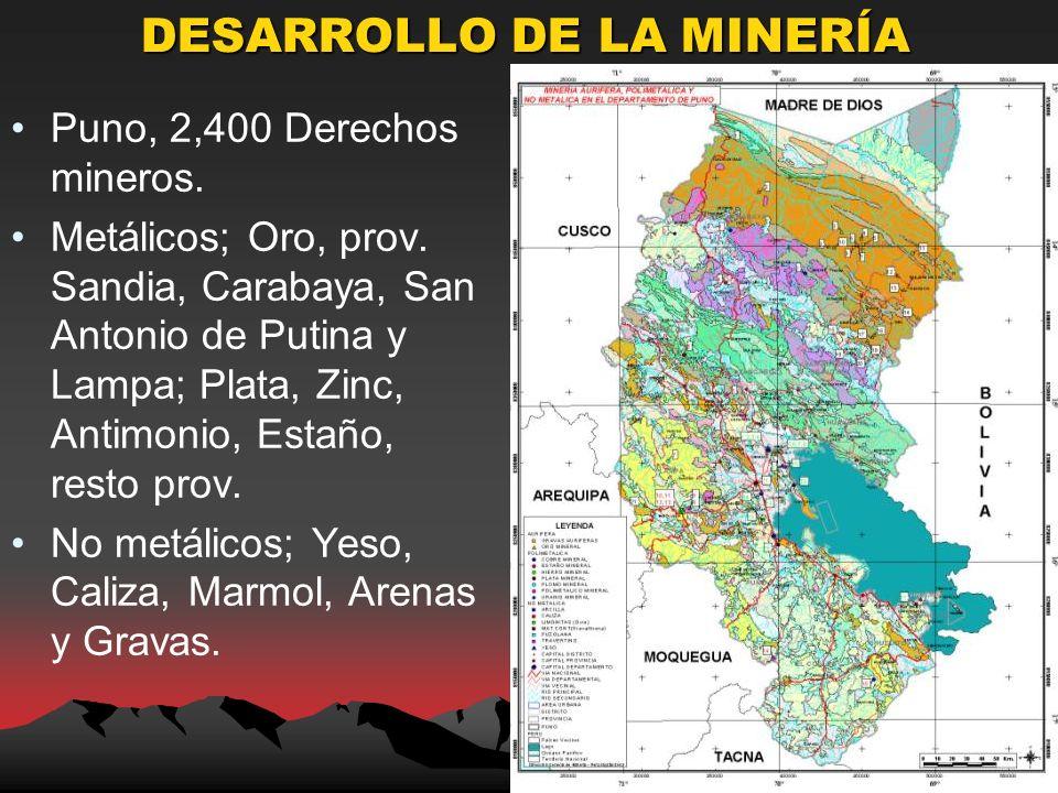 DESARROLLO DE LA MINERÍA