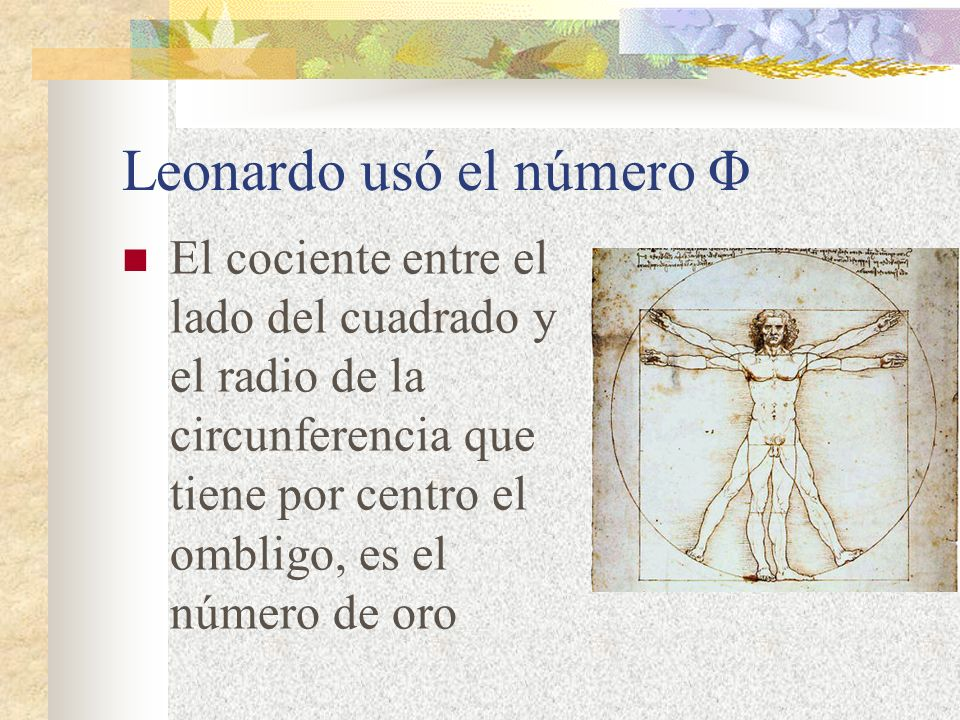 Leonardo usó el número Φ