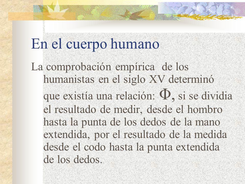 En el cuerpo humano