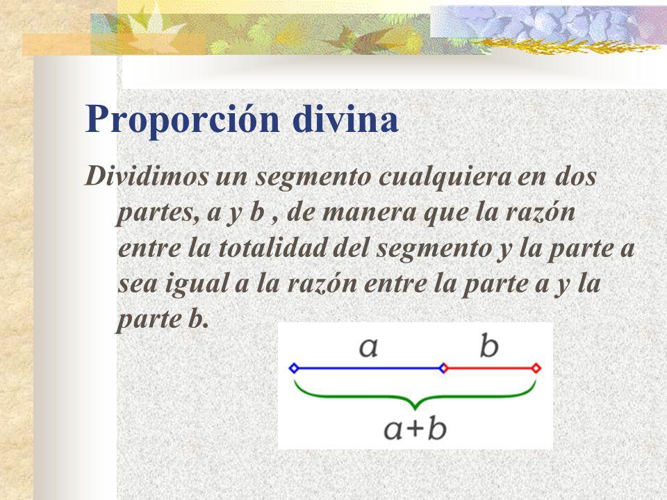 Proporción divina