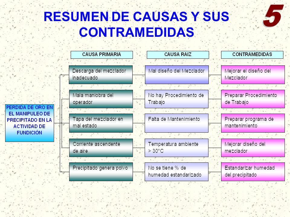 RESUMEN DE CAUSAS Y SUS CONTRAMEDIDAS