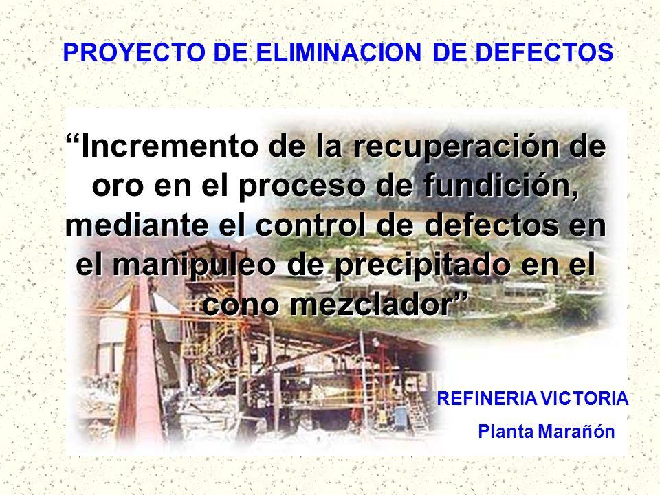 PROYECTO DE ELIMINACION DE DEFECTOS