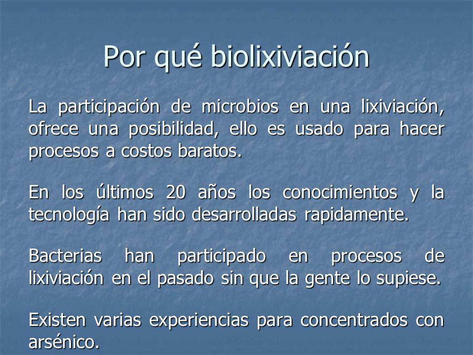 Por qué biolixiviación