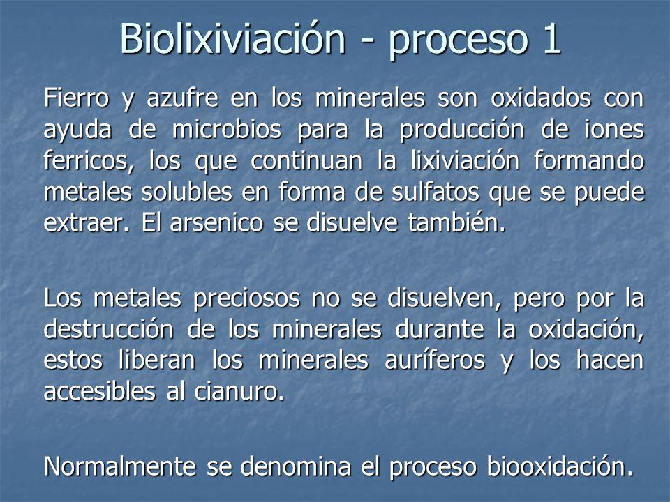Biolixiviación - proceso 1
