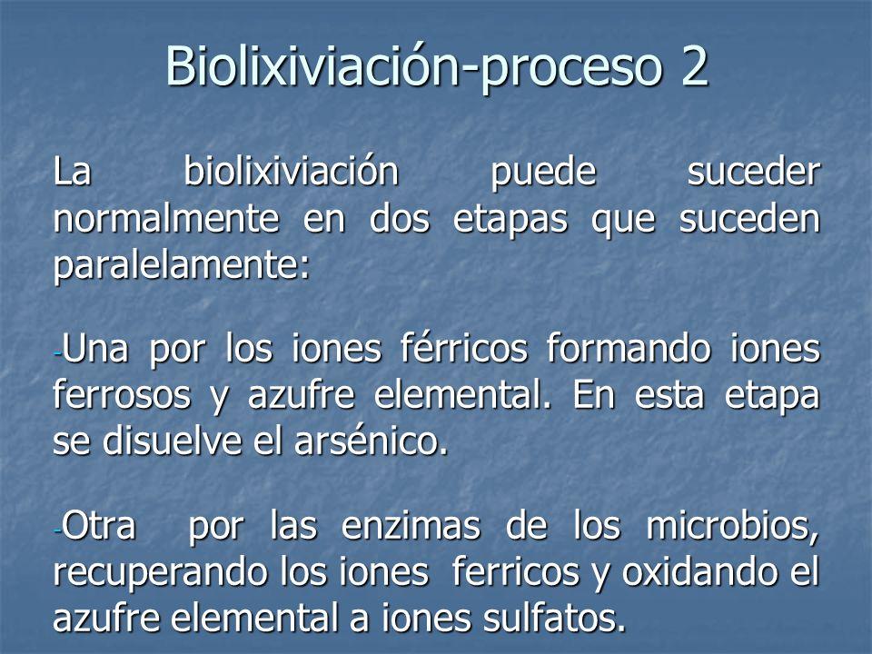Biolixiviación-proceso 2