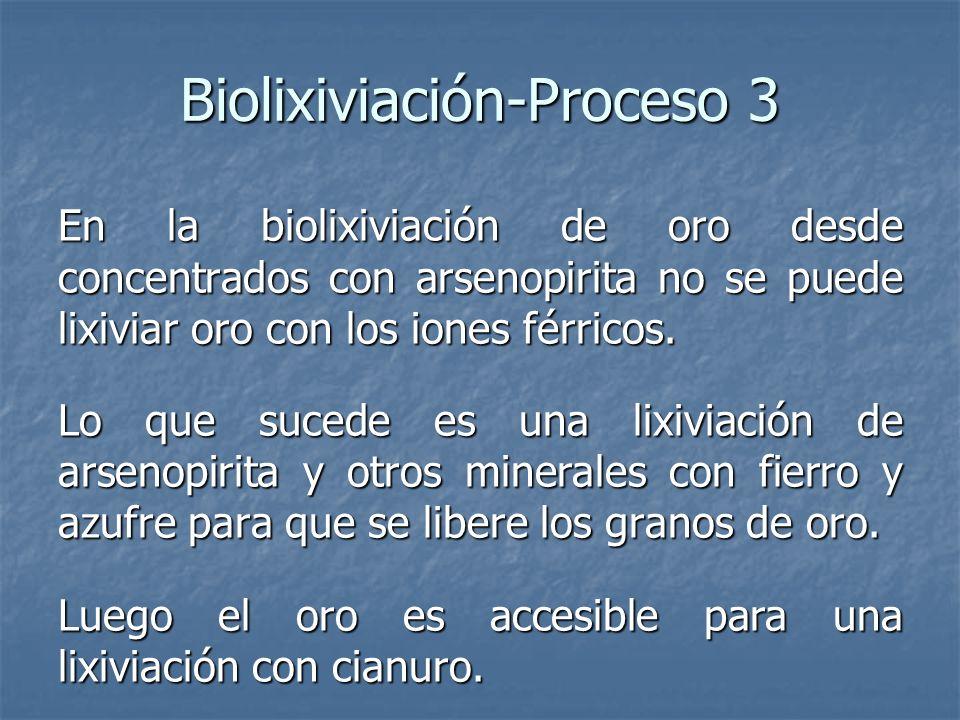 Biolixiviación-Proceso 3