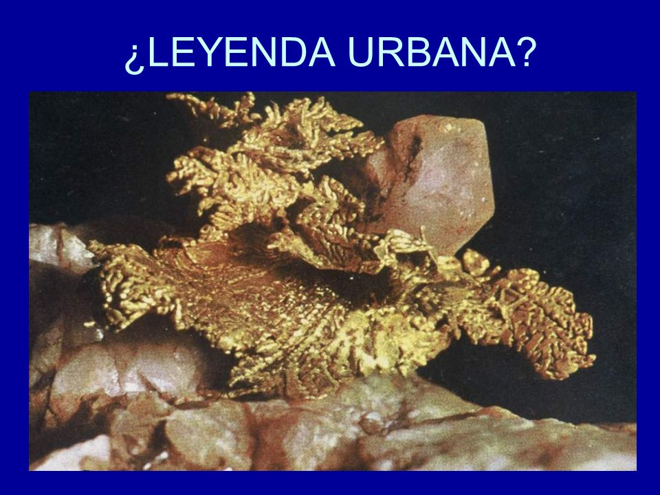 ¿LEYENDA URBANA