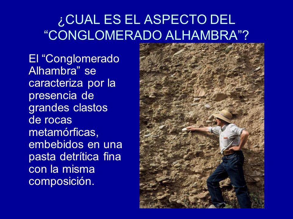 ¿CUAL ES EL ASPECTO DEL CONGLOMERADO ALHAMBRA