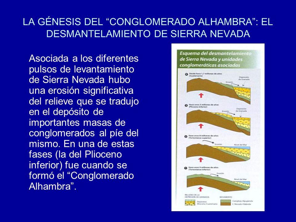 LA GÉNESIS DEL CONGLOMERADO ALHAMBRA : EL DESMANTELAMIENTO DE SIERRA NEVADA
