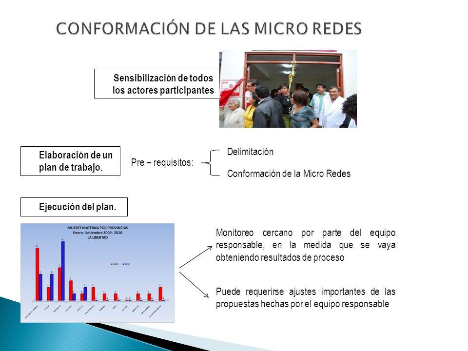 CONFORMACIÓN DE LAS MICRO REDES