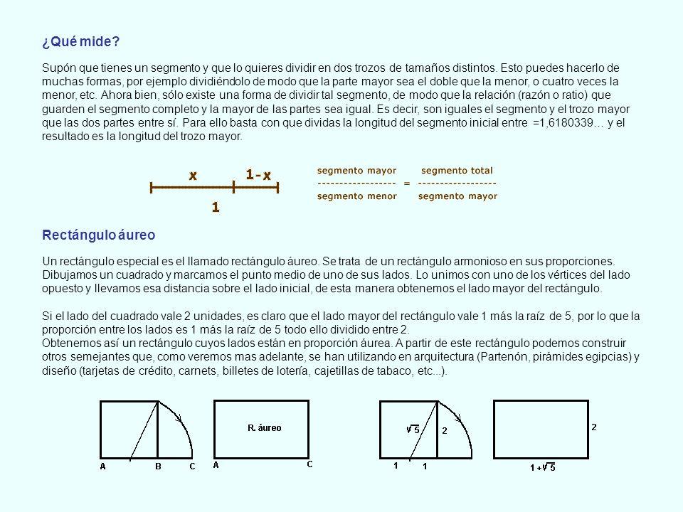¿Qué mide Rectángulo áureo