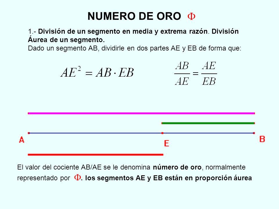 NUMERO DE ORO F 1.- División de un segmento en media y extrema razón. División Áurea de un segmento.