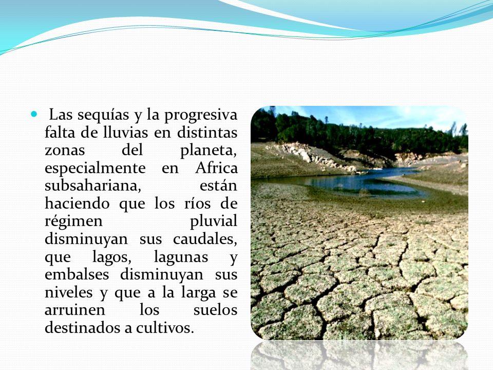 Las sequías y la progresiva falta de lluvias en distintas zonas del planeta, especialmente en Africa subsahariana, están haciendo que los ríos de régimen pluvial disminuyan sus caudales, que lagos, lagunas y embalses disminuyan sus niveles y que a la larga se arruinen los suelos destinados a cultivos.