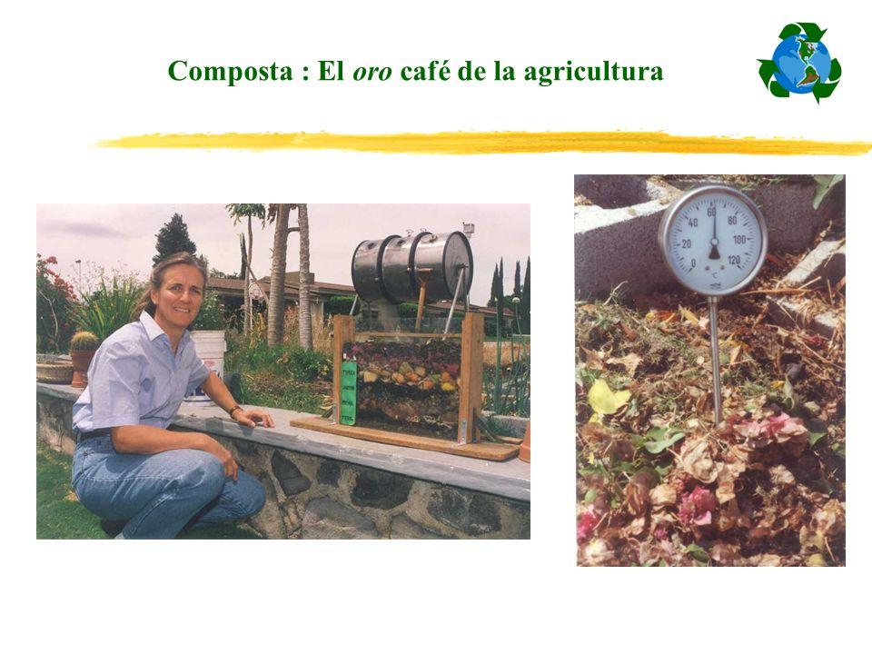 Composta : El oro café de la agricultura