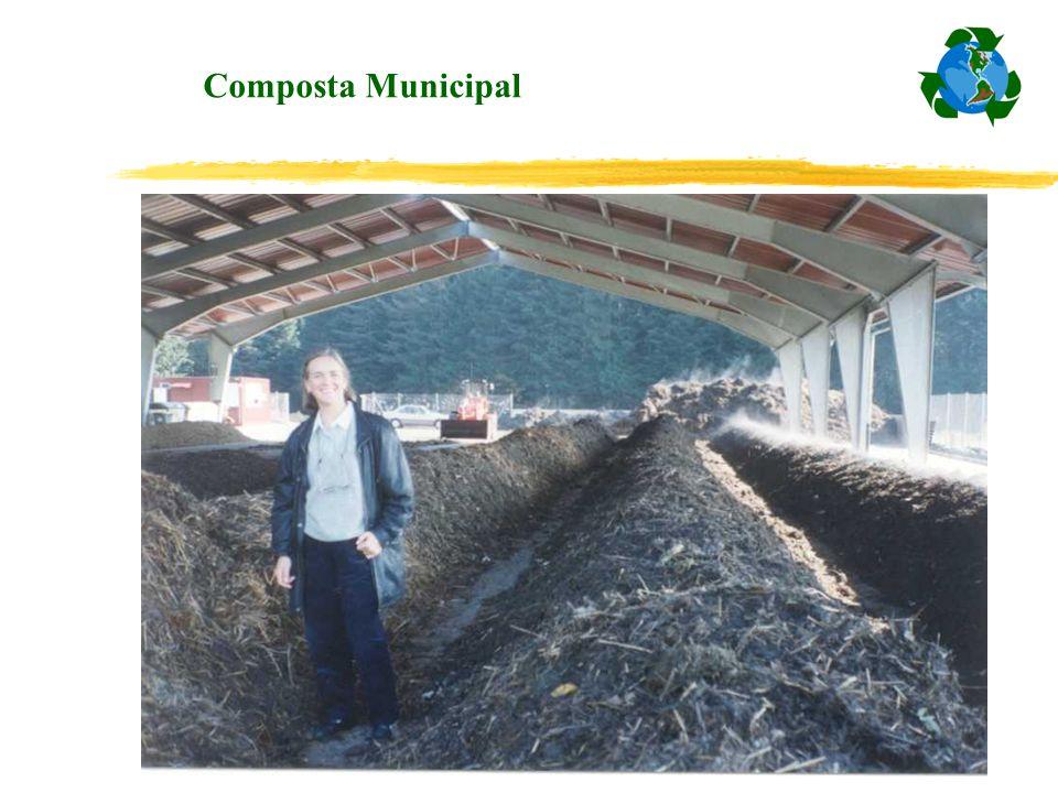 Composta Municipal
