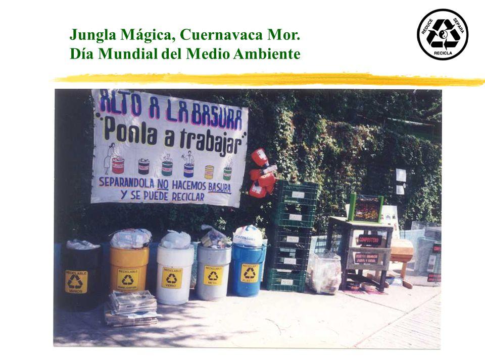 Jungla Mágica, Cuernavaca Mor.