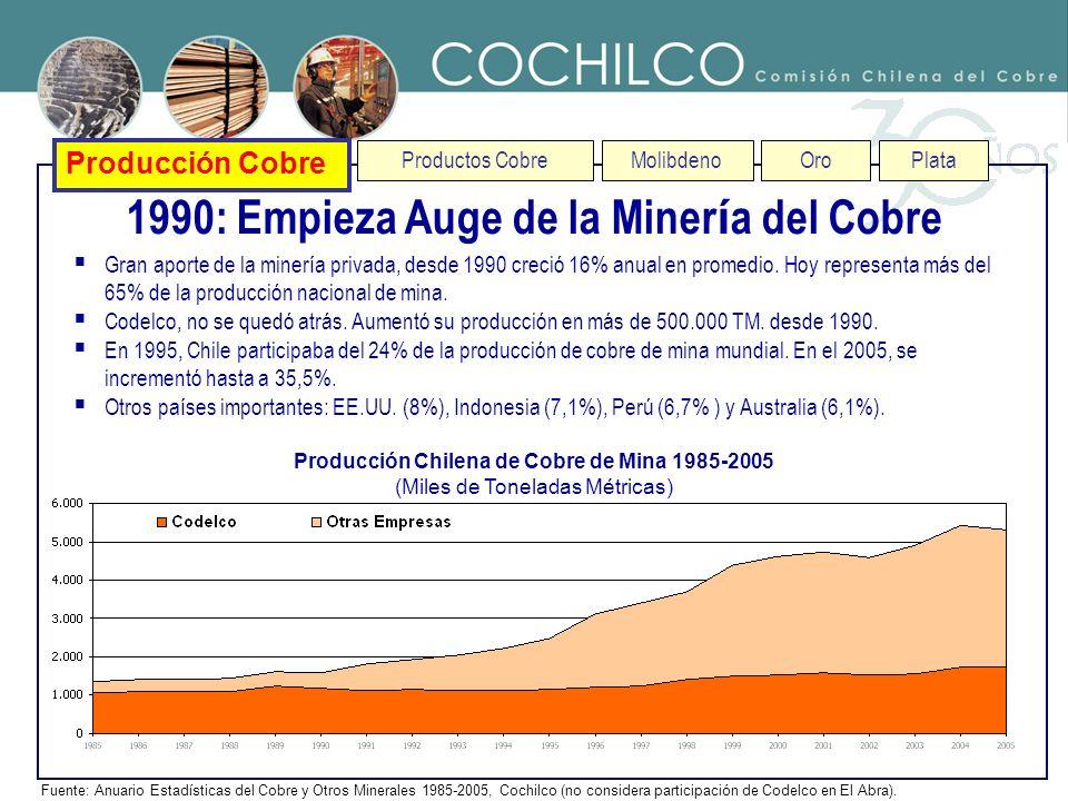 1990: Empieza Auge de la Minería del Cobre