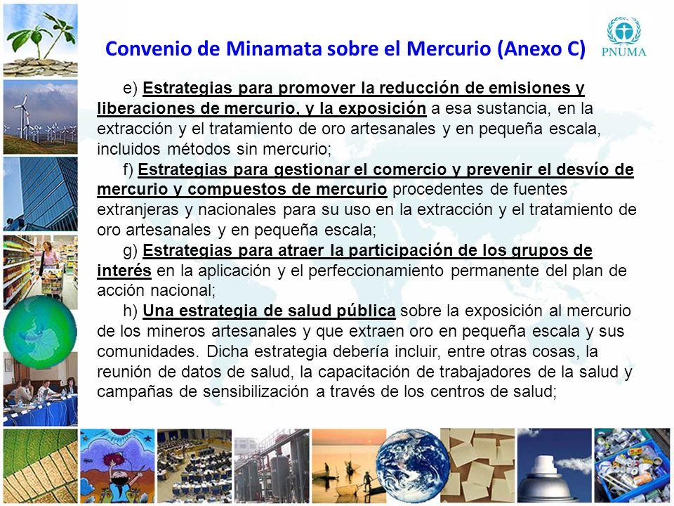Convenio de Minamata sobre el Mercurio (Anexo C)