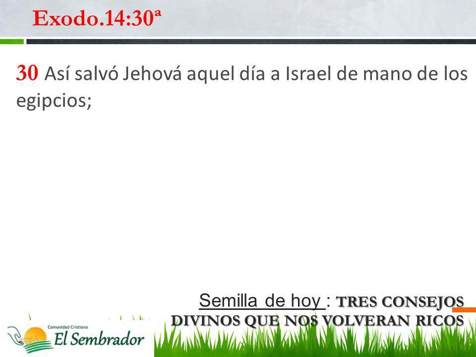 30 Así salvó Jehová aquel día a Israel de mano de los egipcios;