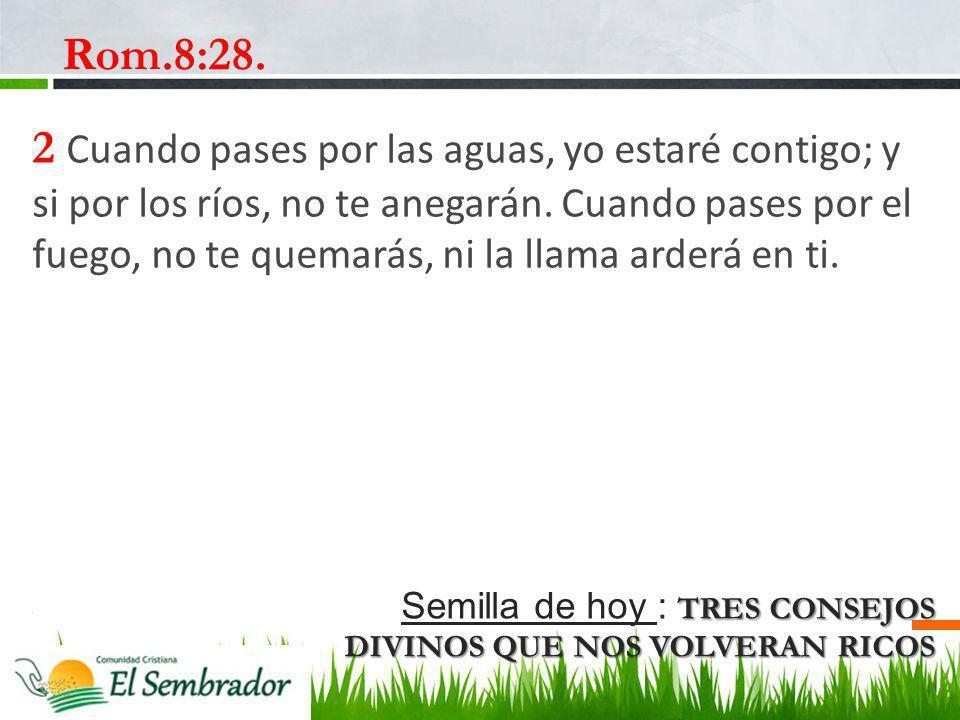Rom.8:28.
