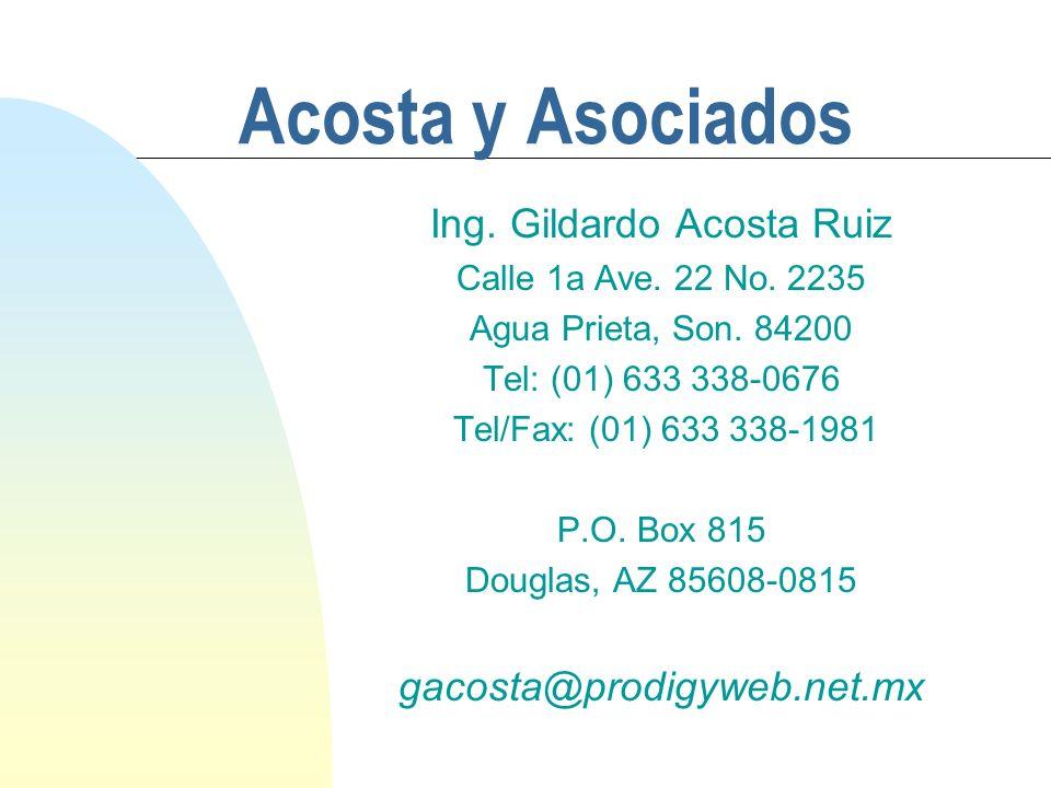 Ing. Gildardo Acosta Ruiz
