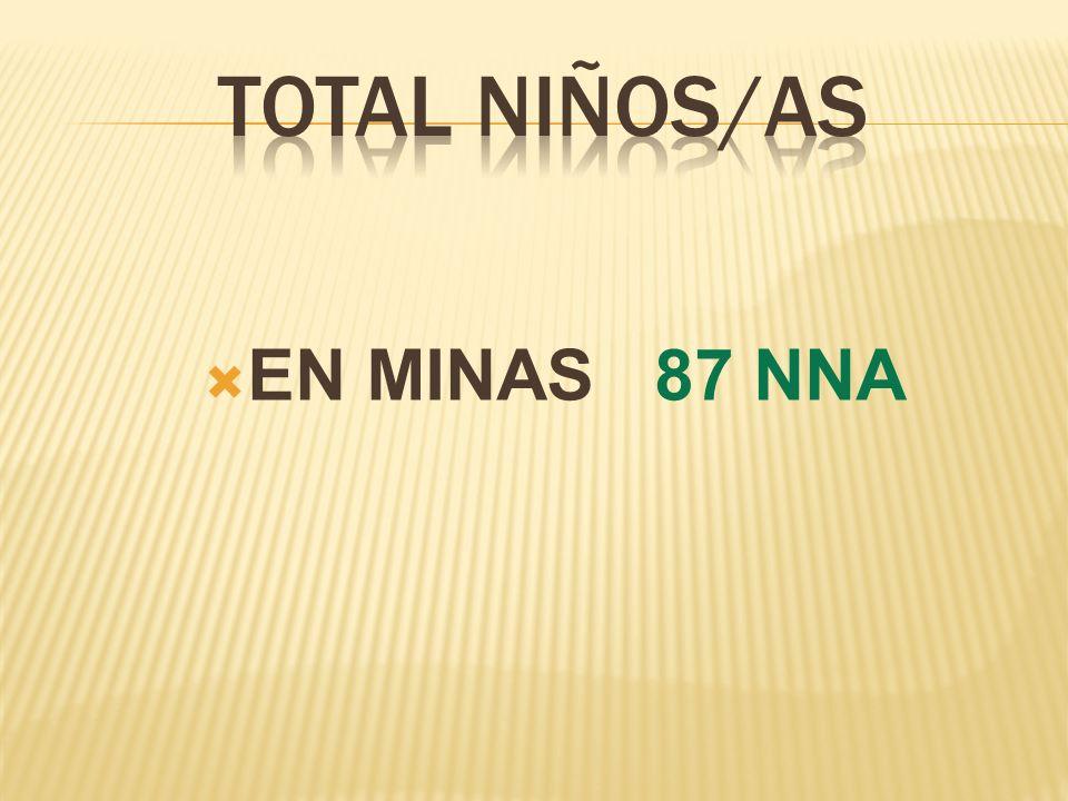 TOTAL NIÑOS/AS EN MINAS 87 NNA