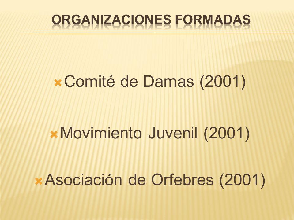 ORGANIZACIONES FORMADAS