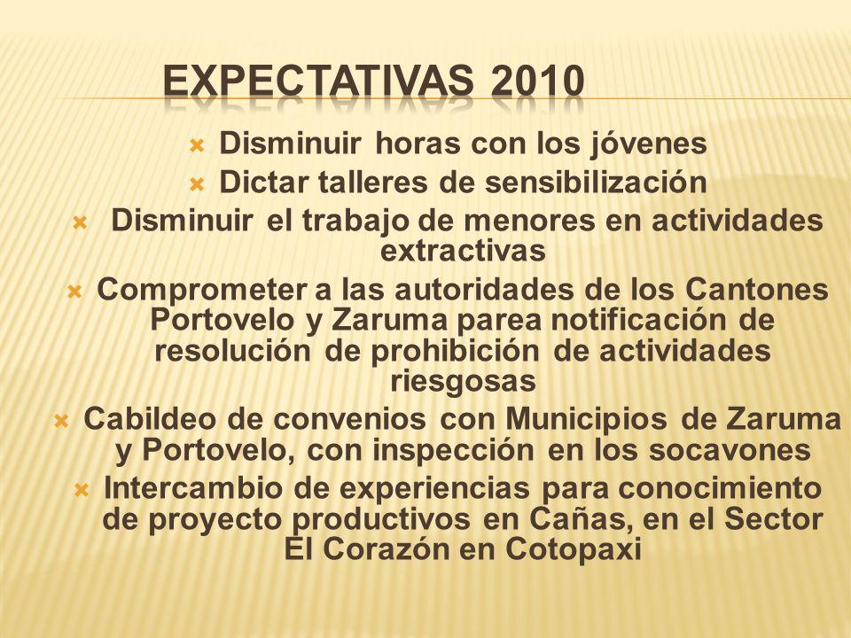 Expectativas 2010 Disminuir horas con los jóvenes