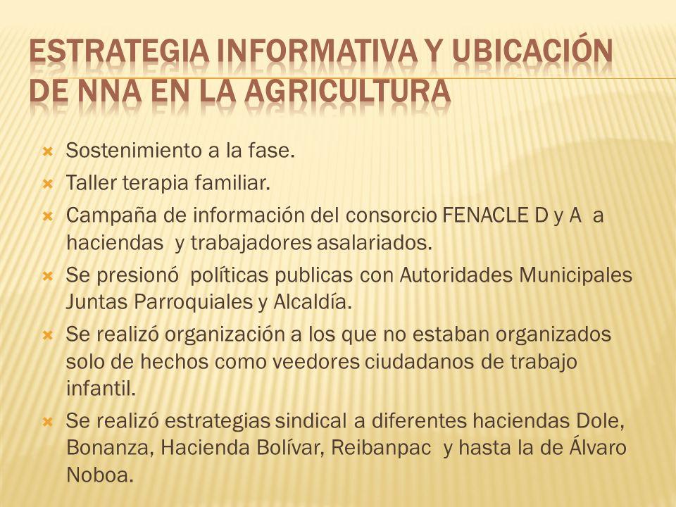 ESTRATEGIA INFORMATIVA Y UBICACIÓN DE NNA EN LA AGRICULTURA