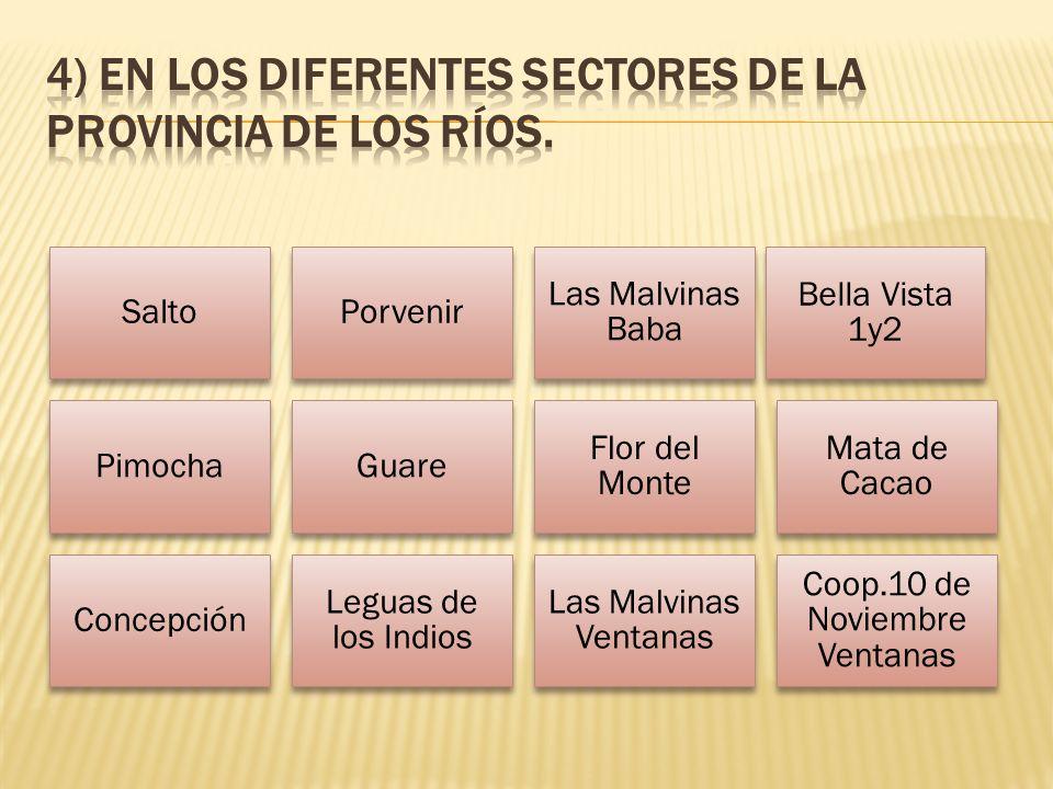 4) En los diferentes sectores de la provincia de Los Ríos.