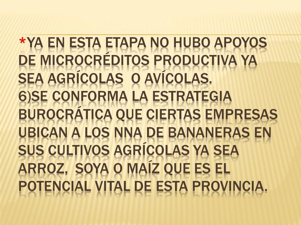 *Ya en esta etapa no hubo apoyos de microcréditos productiva ya sea agrícolas o avícolas.