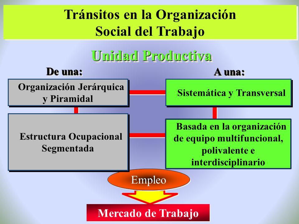 Unidad Productiva Tránsitos en la Organización Social del Trabajo