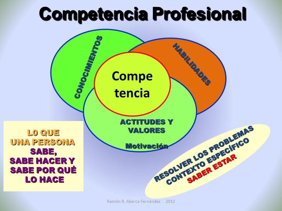 Competencia Profesional