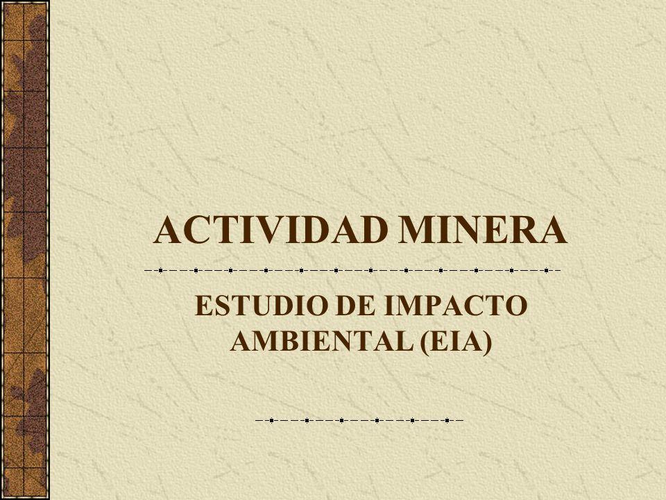 ESTUDIO DE IMPACTO AMBIENTAL (EIA)