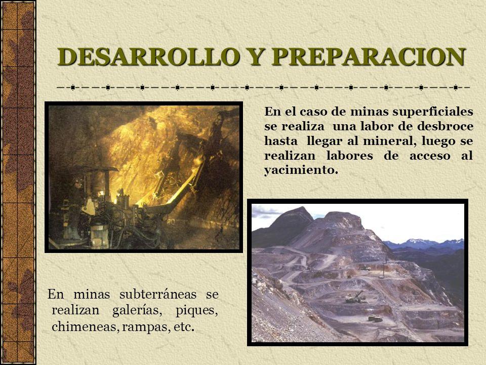 DESARROLLO Y PREPARACION