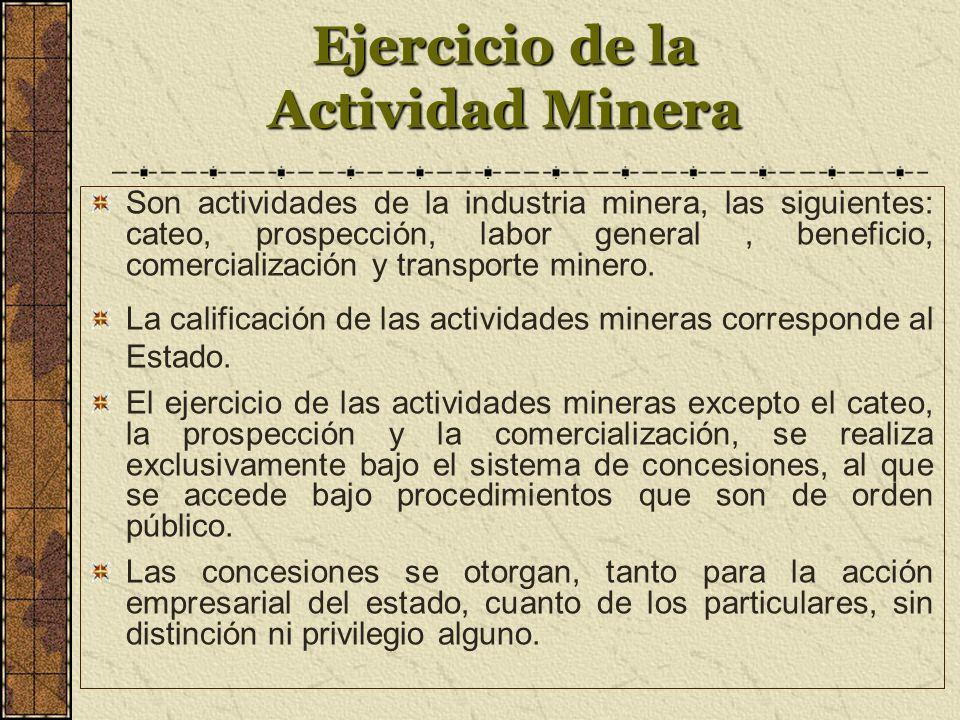Ejercicio de la Actividad Minera