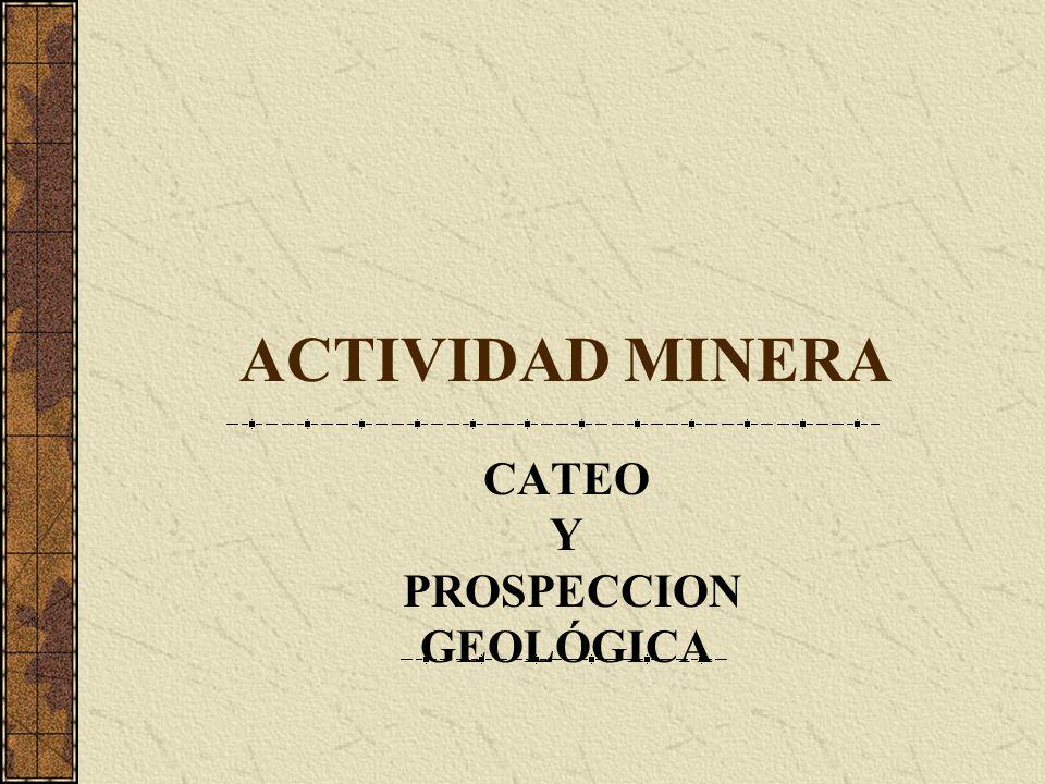 CATEO Y PROSPECCION GEOLÓGICA