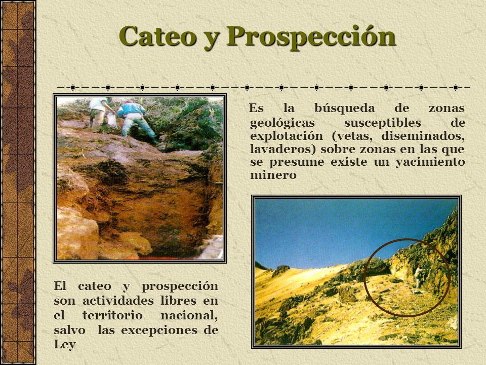 Cateo y Prospección
