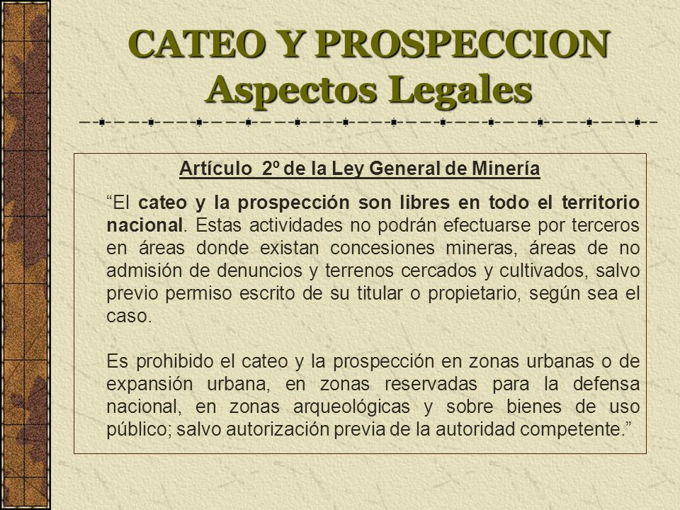 CATEO Y PROSPECCION Aspectos Legales