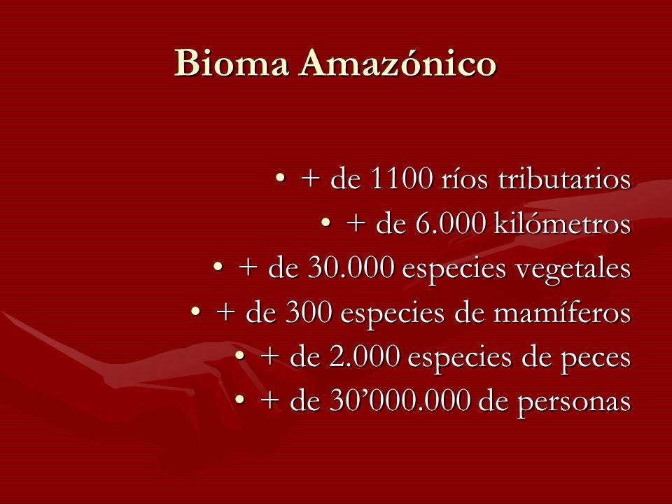 Bioma Amazónico + de 1100 ríos tributarios + de 6.000 kilómetros